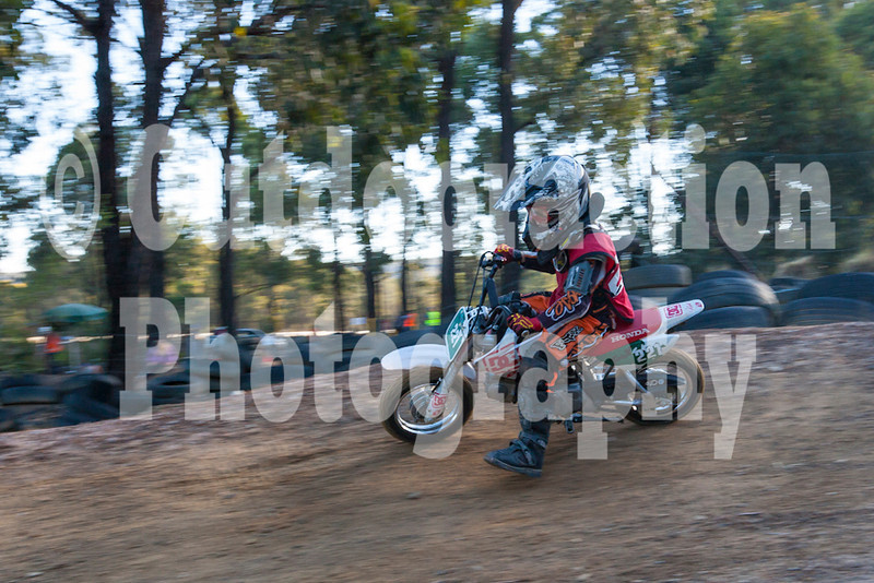 PenrithPCYC_Nippers-0355