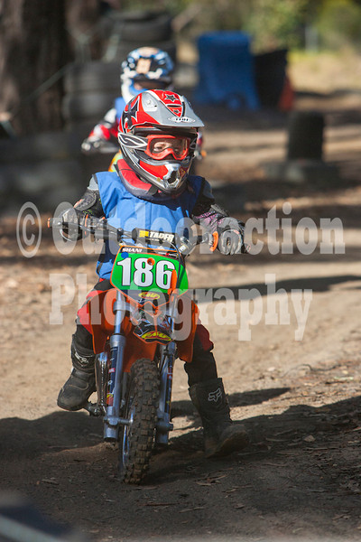 PenrithPCYC_Nippers-0195