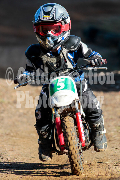 PenrithPCYC_Nippers-0040