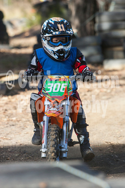 PenrithPCYC_Nippers-0197