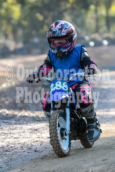 PenrithPCYC_Nippers-0337