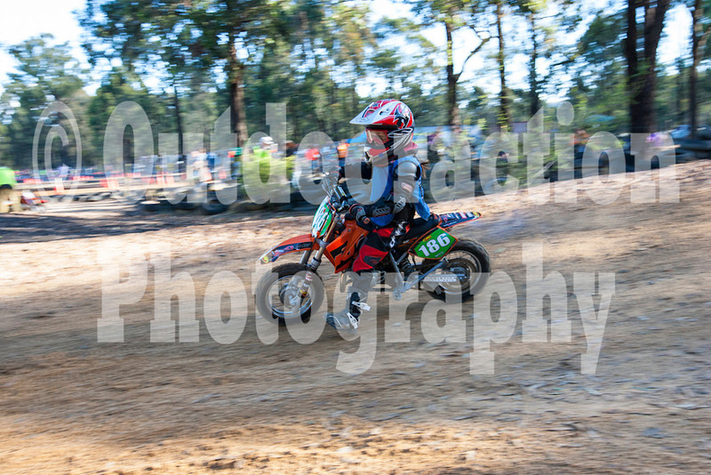 PenrithPCYC_Nippers-0348