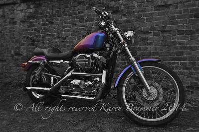 Harley Davidson Speedster 1200 Custom Mono Wall KB1