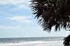 2016 Daytona Beach Bike Week 2 (24)