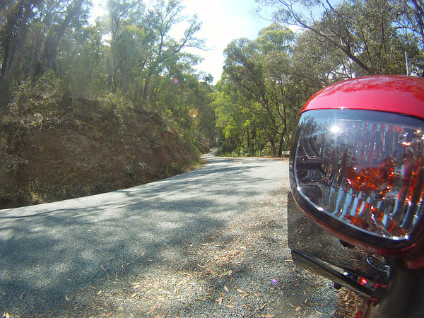 One the road from Eildon to Jamieson
