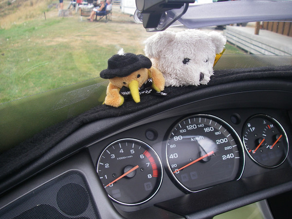 For those not aware we try and take Ted.e with us on all our trips he gained a friend to keep him company on this trip. kyle the kiwi