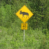 First of many Moose crossing signs.