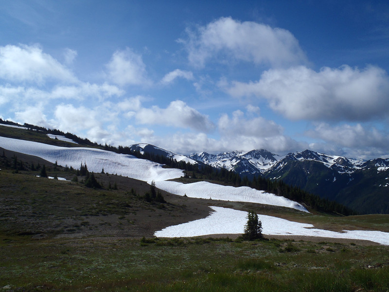 The view from Obstruction Point (start of the ride) at the summit of Hurricane Ridge.
