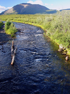 7:47 PM 7/15/07 - Rock Creek, a few miles beyond the Tangle River - a beautiful clear stream flowing across the tundra.