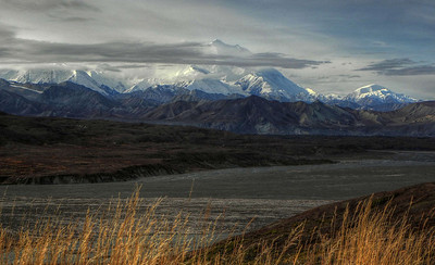 Denali National Park - 2011