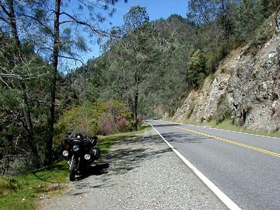 The Suzuki GS1100G on California Hwy.  between Eureka and Redding.