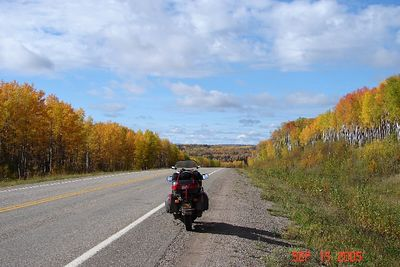 Fall colors about 15 miles west of Fort Nelson.