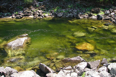 Sunday, July 23: This view into one of the deeper pools illustrates the clear water of the Lochsa River..