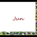 06 Jun