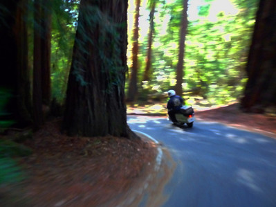 Highway 236, Big Basin Way