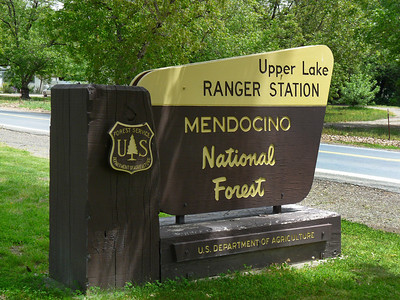 The Ranger Station in Upper Lake