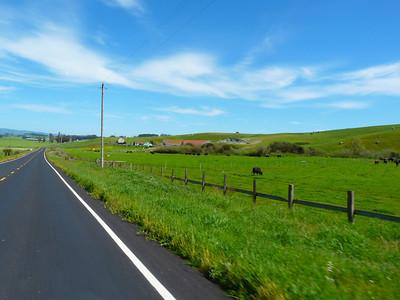 Tomales-Petaluma Road