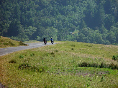 Matolle Rd, on the Lost Coast