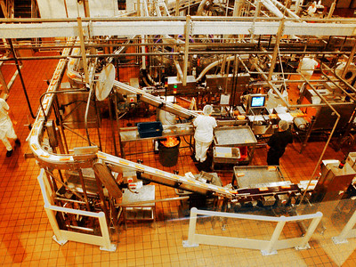 Have you ever eaten Tillamook cheese? Here's where it's made, in Tillamook, Oregon. Cool factory tour!