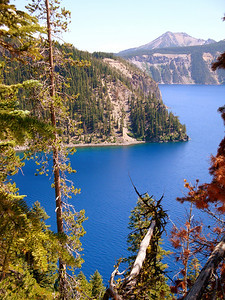 Crater Lake, Oregon. For reasons I won't go into now, I have flown over Crater Lake more or less 500 times. I've always wanted to drive around here. This was my chance.  The lake is so deep that the blue of the water is a color never seen before in nature.