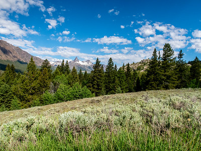 Between Silver Gate and the Beartooth Pass