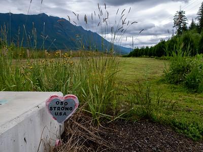 Oso Landslide Memorial