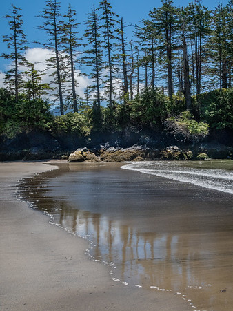 We took a rest day in Port Hardy, rented a car and drove 70 miles on a dirt road to the beach. Wonderful Pacific Northwest beach - clod water, brilliant sun, pleasant temperatures. If you turned around from the spot of the previous photo, you'd see this. Water maybe 60 degrees, air, too.