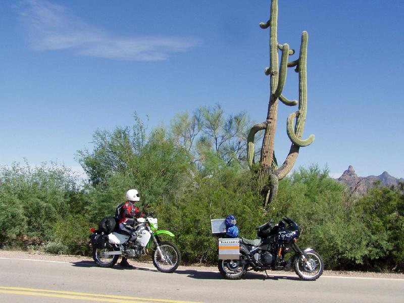 OK, so now on with the ride, Sonora Desert Saguero cactus, also a minor hazard with cactus needles on the roadsides