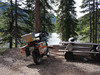 Kingdom Lake campsite, still virgin forest all round. ~ good fishing.