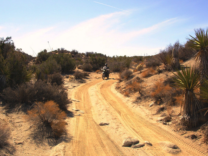 Start of the Grapevine trail, Borrego Springs.