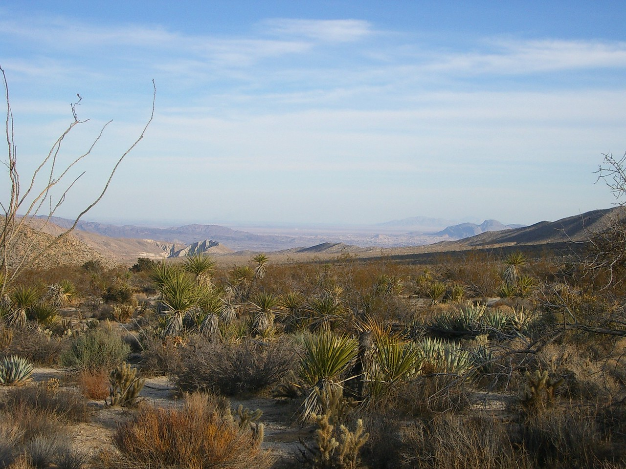 Ahhh... the desert has a sense of peace  and tranquility of its own.