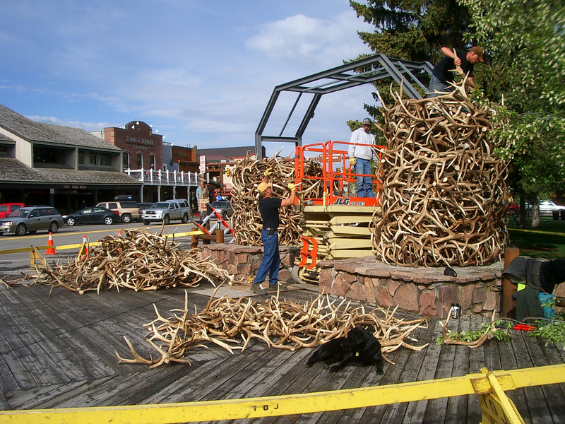 We actually saw an antler arch rebuild in progress.