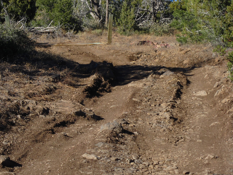 These ruts held my attention, but after 6 miles, they got deeper and deeper and then mixed with more and more rocks, and I finally turned around and went back.