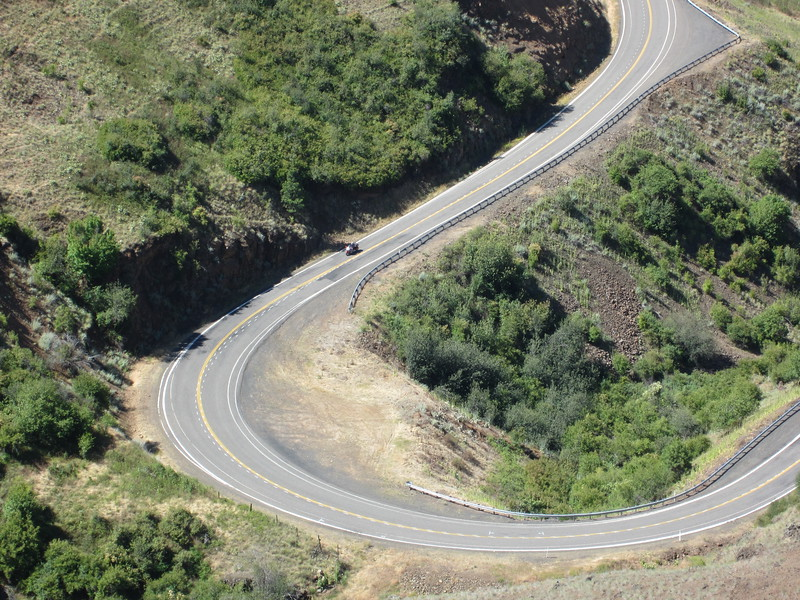 Bill on a lower hairpin.