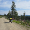 FSR 201 climbs high over the ridge before descending into the Kettle River valley.