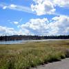 Approaching Tunkwa Lake Provincial Park.
