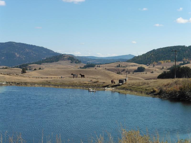 A reservoir along Fields Road near Molson.