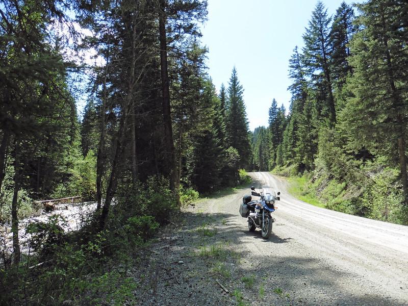 Taking a  break on Douglas Lake Road along the Salmon River.