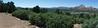 Amgen Tour Of California 2017 -Returning home - Views around Sedona