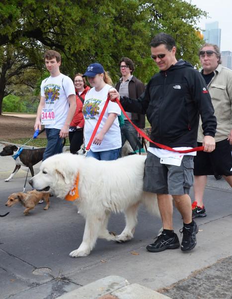 2013 Mighty Texas Dog Walk. Austin, Texas ..... Copyright (c) 2013 - Barry Jucha Photography