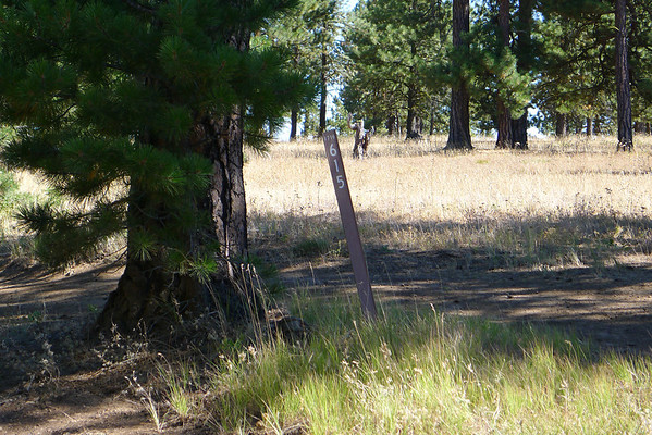 Naches Trail and Hog Ranch Road Sep 2, 2011