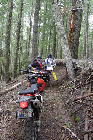 Blue Lake ORV Trails June  22, 2013