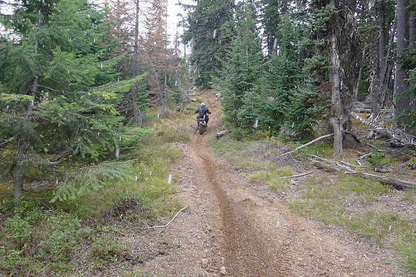 Taneum Trail Ride Oct 27, 2013