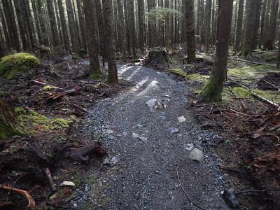 Reiter Foothills Jan 25, 2015