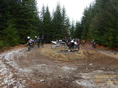 Shelton Area Forest Roads Jan 3, 2015
