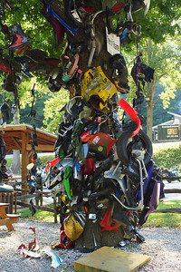 Tree of Shame Deals Gap Motorcycle Resort Deals Gap, North Carolina