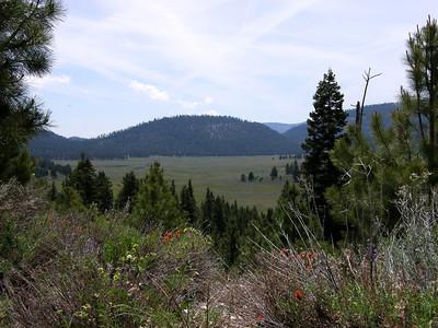 Oregon (2008)