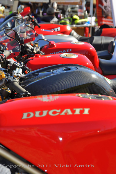 Lots of Ducati's of every vintage and style