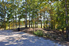 The wooded area is available for chairs and picnics