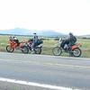 blf_2005 038